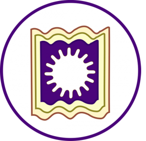 Rajshahi University logo (Top 10 Universities in Bangladesh)