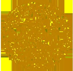 Lund University Logo (Top 10 Universities in Sweden)