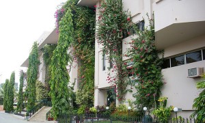 Sir Syed University