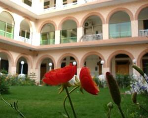 Gomal Medical College