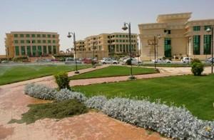 MSA University Egypt Admission