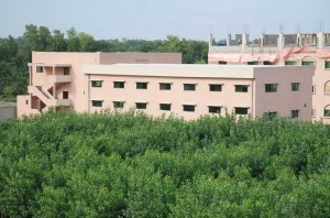 Sarhad University Peshawar