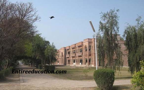 Cadet College Jhang Admission