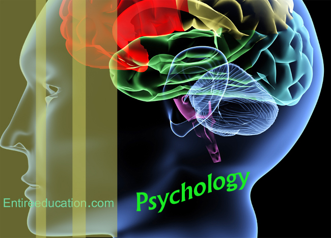 Best Universities in Pakistan For Psychology