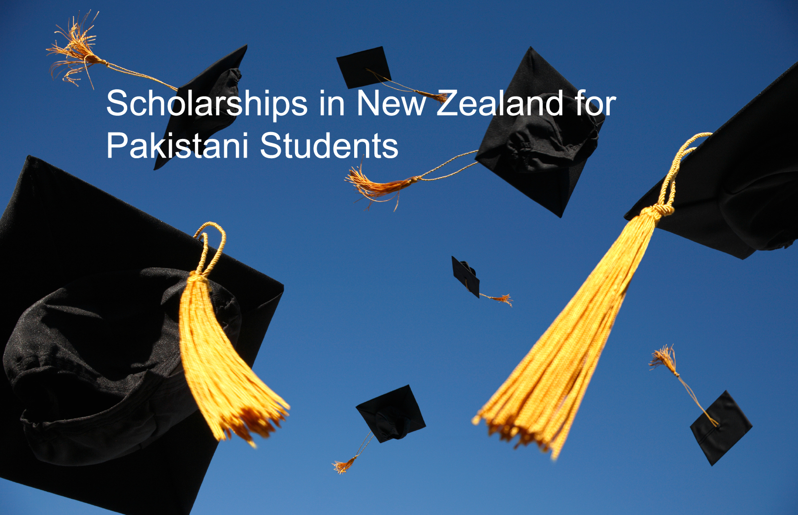 Fully Funded Scholarship in New Zealand For Pakistani Students