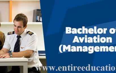 What is Aviation Management BS And MS, Flying Clubs, Pilot License, Jobs