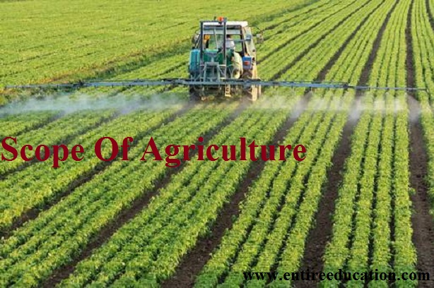 Scope Of Agriculture Courses, Jobs And BSc Universities