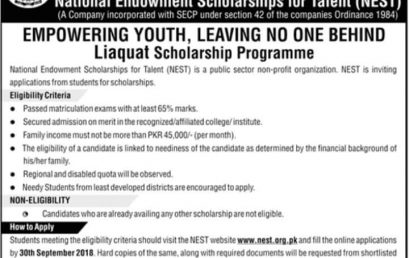 National Endowment Scholarships For Talent (NEST) 2019 Application Form